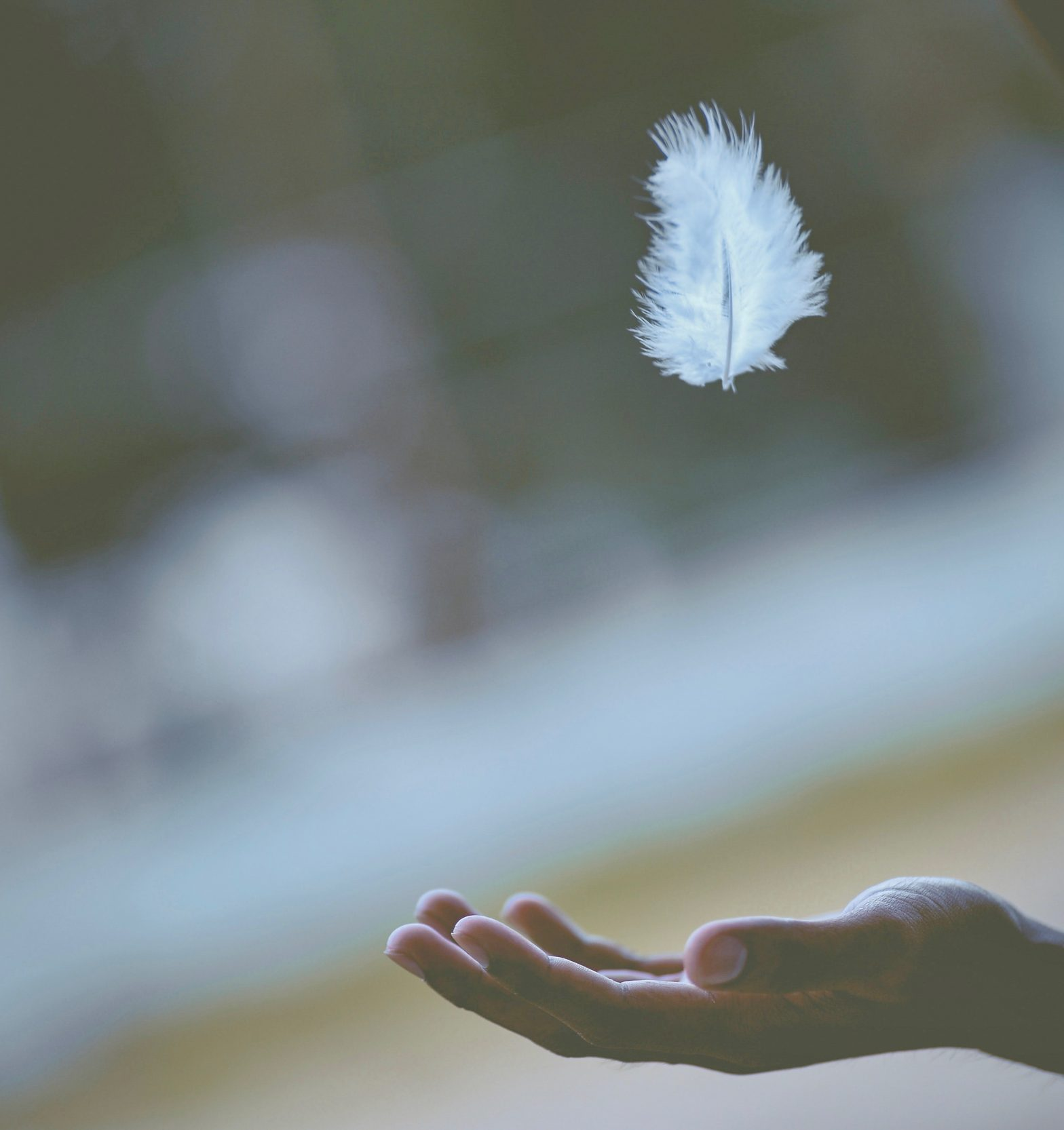 Calm Mind Mindfulness